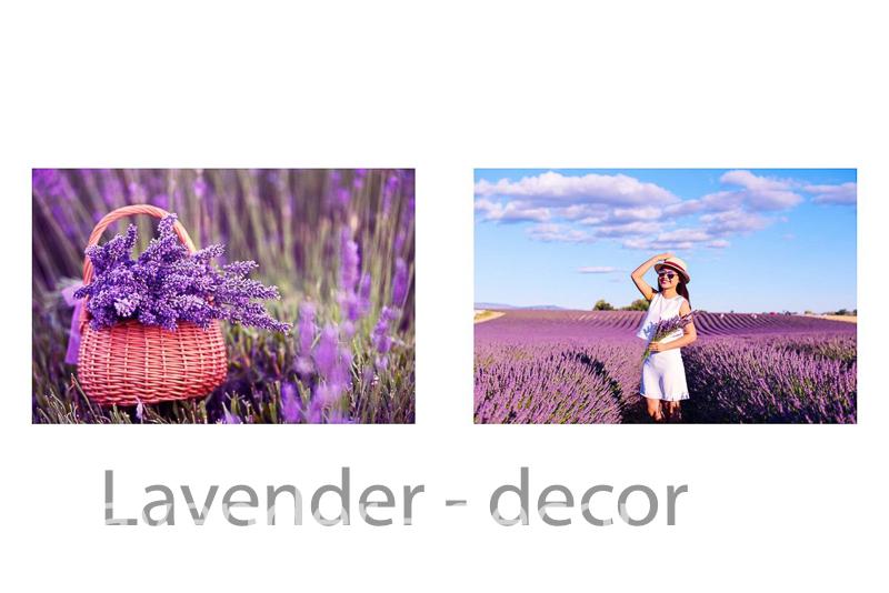 lavender decor4 2 - HOA LAVENDER HAY CÒN GỌI CÁI TÊN KHÁC HOA OẢI HƯƠNG ĐẾN TỪ  PHÁP